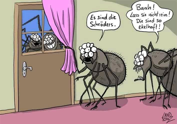 Schröders.jpg